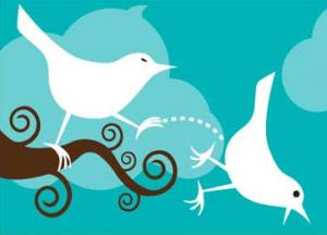 6 razones por las que NUNCA te seguiré en Twitter